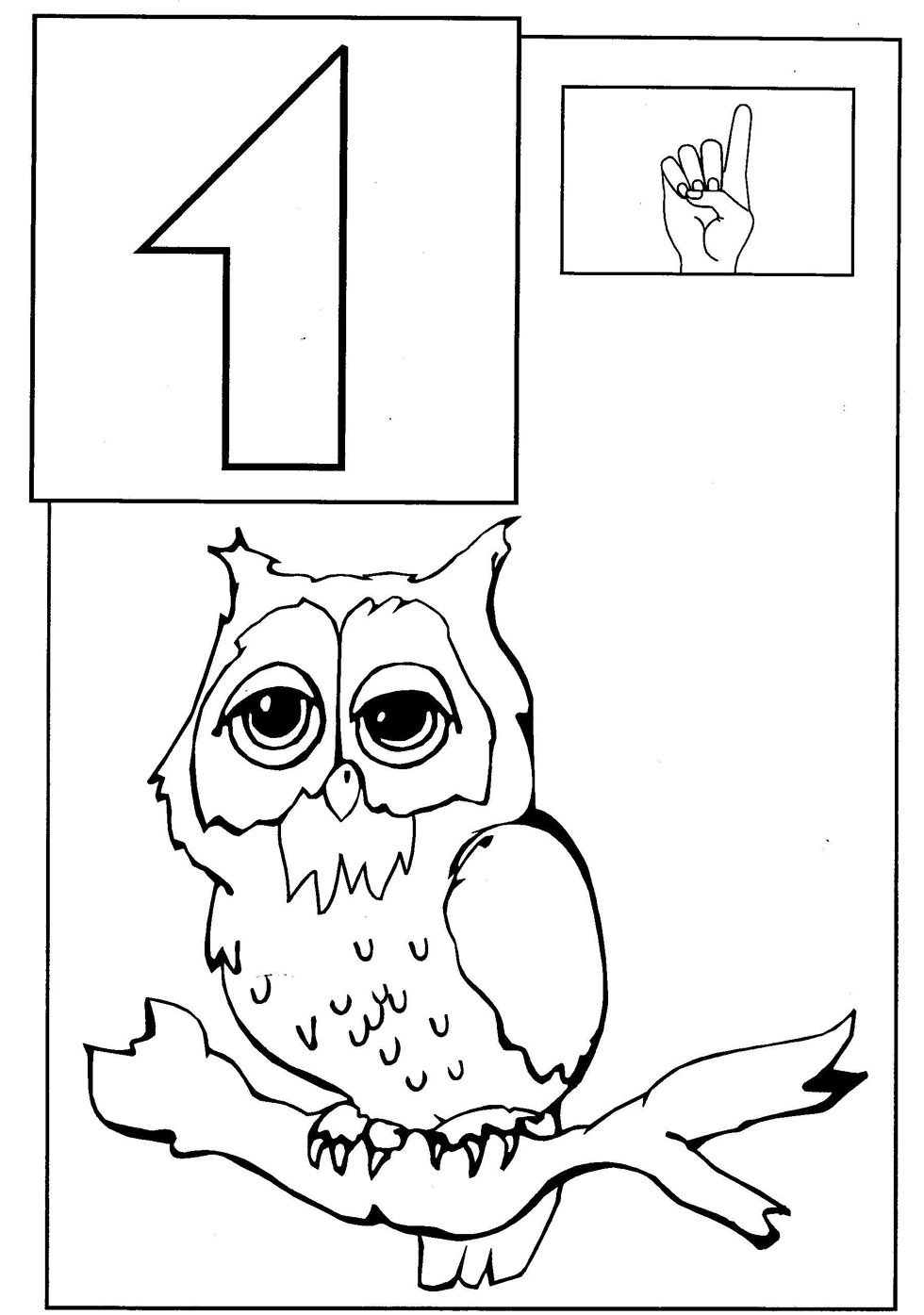 Toddler coloring images - Owl Coloring Page